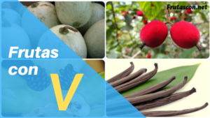 Frutas con la letra V frutas con V