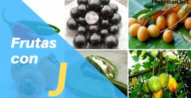 Frutas con la letra J lista de frutas que empiezan con j