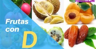 Frutas con la letra D lista de frutas con la d