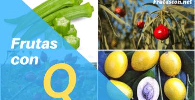 Frutas con la letra Q lista de frutas con la q