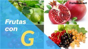 Frutas con la letra G lista de frutas con la g