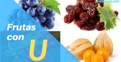 Frutas que empiezan con U lista de frutas con la u